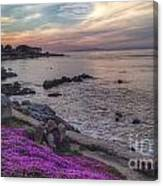 Sunset In Pacific Grove Canvas Print