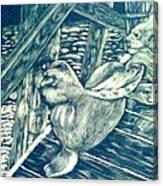 Pacific Sea Lions Canvas Print