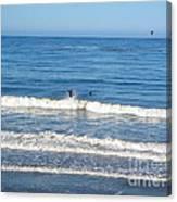 Pacific Surfer Canvas Print