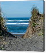 Pacific Trail Head Canvas Print