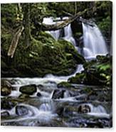 Packer Falls And Creek Canvas Print