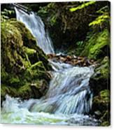 Packer Falls Vert 1 Canvas Print