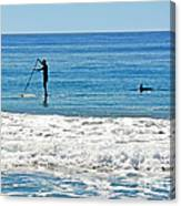 Paddle Boarder And Dolphin Canvas Print