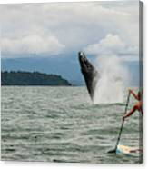 Paddle Boarders And Humpback Whale Canvas Print
