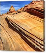 Pages From Natures Story Canvas Print