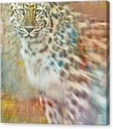 Paint Me A Cheetah Canvas Print