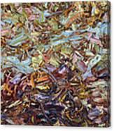 Paint Number 51 Canvas Print