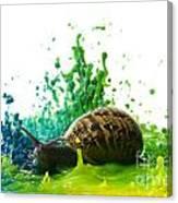 Paint Sculpture And Snail 4 Canvas Print