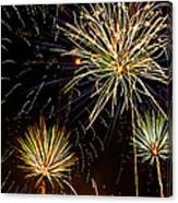 Paint The Sky With Fireworks  Canvas Print
