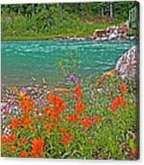 Paintbrush By Bow River In Banff Np-ab Canvas Print