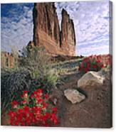 Paintbrush And  Organ Rock Canvas Print