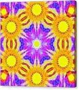 Painted Cymatics 161.66hz Canvas Print