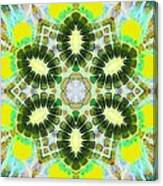 Painted Cymatics 181.66hz Canvas Print