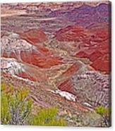 Painted Desert From Rim Trail In Petrified Forest National Park-arizona Canvas Print