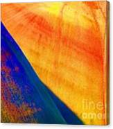 Painted Hills 6 Canvas Print