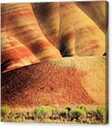Painted Hills And Grassland Canvas Print