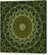 Painted Kaleidoscope 11 Canvas Print