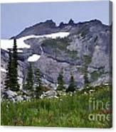 Painted Landscape Canvas Print