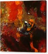 Painted Man Canvas Print