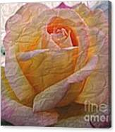 Painted Paper Rose Canvas Print