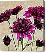 Painted Pink Bouquet Canvas Print
