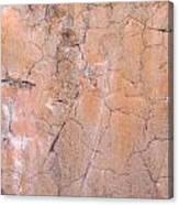 Painted Pink Concrete Canvas Print