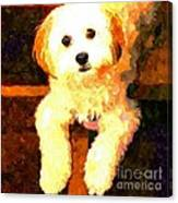 Painted Puppy Canvas Print