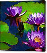 Painted Purple Water Lilies Canvas Print