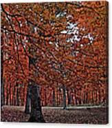 Painterly Style Autumn Trees Canvas Print
