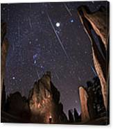 Painting The Needles Under The Geminids Meteor Shower Canvas Print