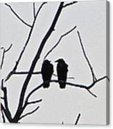 Pair Of Birds In Black Canvas Print