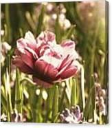 Pale Flowers Canvas Print