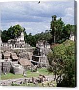 Palenque Ruins Canvas Print
