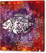 Paleo Fish Canvas Print