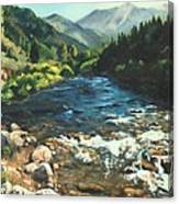 Palisades Creek  Canvas Print