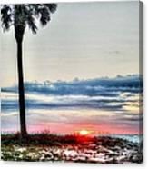 Palm And Sun Canvas Print