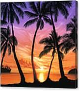 Palm Beach Sundown Canvas Print