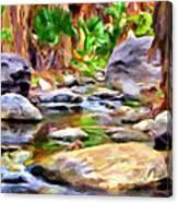 Palm Canyon Trail Canvas Print