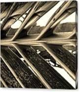 Palms E Sepia Canvas Print