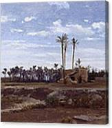 Palm Forest In Elche Canvas Print