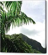 Palm Fronds El Yunque Canvas Print