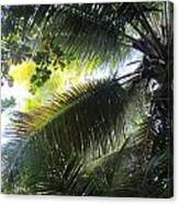 Palm Pattern 1 Canvas Print
