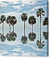 Palm Tree Reflection Canvas Print
