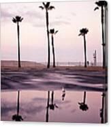 Palm Tree Reflections Canvas Print