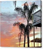 Palm Tree Sunrise  In New England Canvas Print