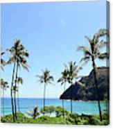 Palm Trees Along The Coast Of Waimanalo Canvas Print