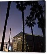 Palm Trees And Hp Pavilion San Jose At Night Canvas Print