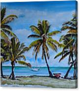 Palm Trees In The Keys Canvas Print