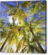 Palm Trees Of Aruba Canvas Print