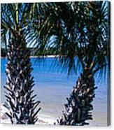 Palm Trees Of Gulf Breeze Canvas Print